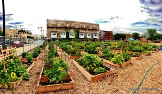 Image source: communitygardens.org